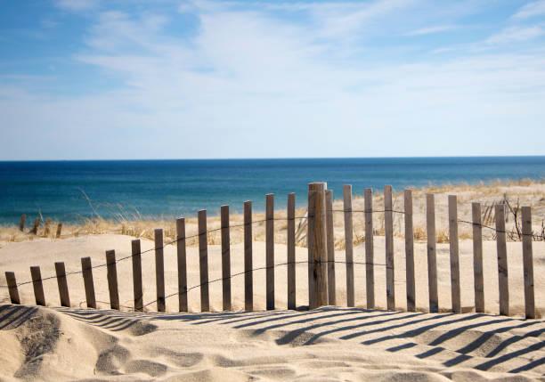 Sand fence at beach.:スマホ壁紙(壁紙.com)