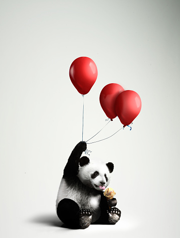 Panda「Panda holding balloons, licking ice cream」:スマホ壁紙(16)
