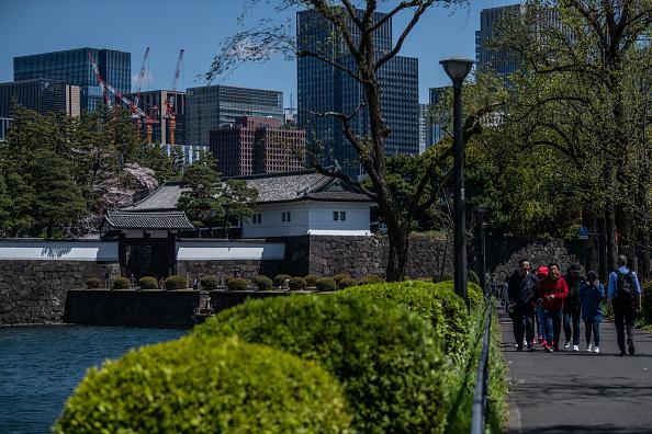 Chrysanthemum「Daily Life Around Tokyo's Imperial Palace」:写真・画像(19)[壁紙.com]