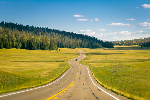 Kaibab National Forest「Road with Kaibab pines into Grand Canyon North Rim – Arizona, USA」:スマホ壁紙(1)