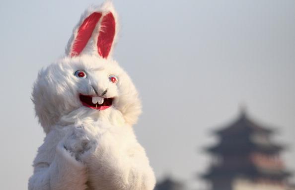 お祭り「Chinese Celebrate The Year Of Rabbit」:写真・画像(12)[壁紙.com]