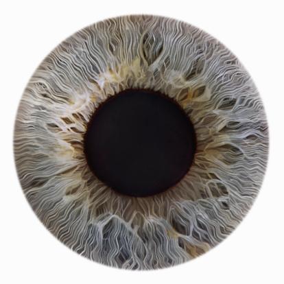 Iris - Eye「GreyIris」:スマホ壁紙(14)