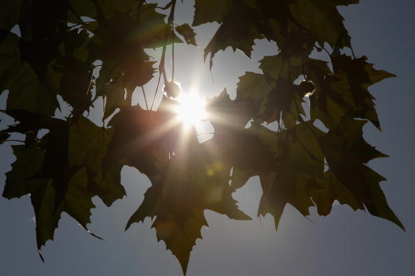 Sunlight「Autumn Weather Reaches Germany」:写真・画像(0)[壁紙.com]