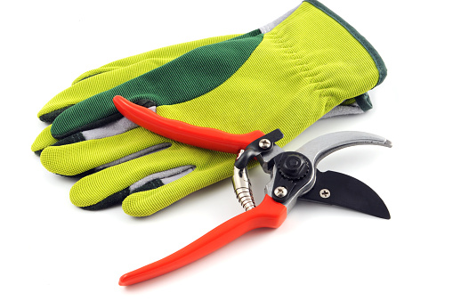 Protective Glove「Open gardening shears and gloves」:スマホ壁紙(4)