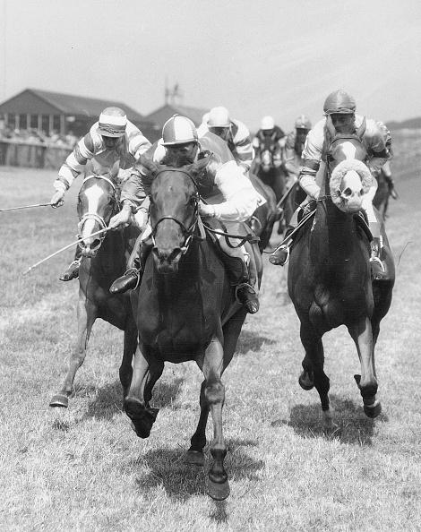 Horse Racing「Persian Chariot」:写真・画像(17)[壁紙.com]