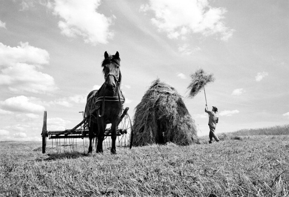 Tradition「European Agriculture」:写真・画像(4)[壁紙.com]