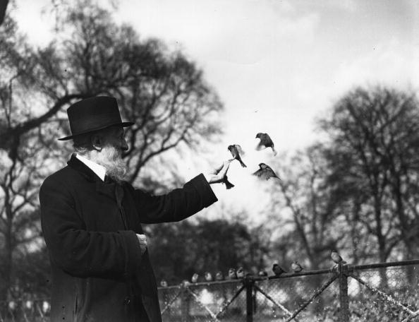 Animal Themes「Bird Man With Birds」:写真・画像(13)[壁紙.com]