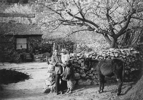 Farm「Chinese Family」:写真・画像(7)[壁紙.com]
