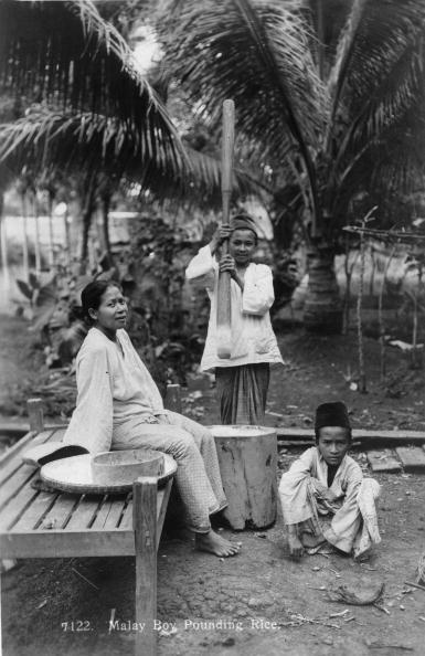 Spencer Arnold Collection「Preparing Rice」:写真・画像(17)[壁紙.com]