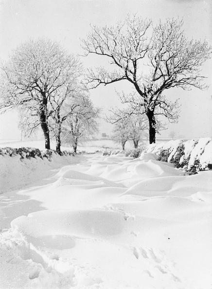 自然の景観「Snow Lane」:写真・画像(19)[壁紙.com]