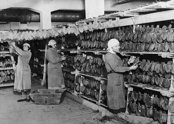 Tobacco Crop「Tobacco Factory」:写真・画像(16)[壁紙.com]