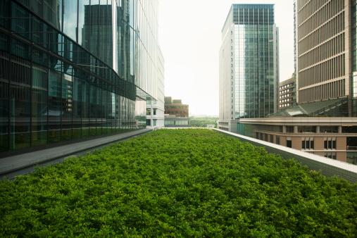 Environmental Conservation「Roof top garden」:スマホ壁紙(2)