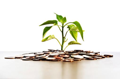 Heat Haze「Like a mirage, healthy seedling seemingly grows out of coins」:スマホ壁紙(12)