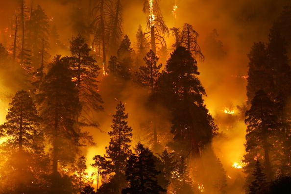 Mountain「Wildfire Continues To Burn In San Bernardino National Forest」:写真・画像(2)[壁紙.com]