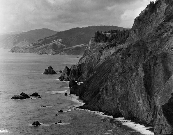 "Wilderness Area「California's ""Lost Coast"" Sinkyone Wilderness」:写真・画像(18)[壁紙.com]"