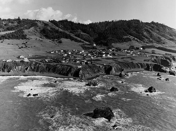 "Wilderness Area「California's ""Lost Coast"" Sinkyone Wilderness」:写真・画像(17)[壁紙.com]"