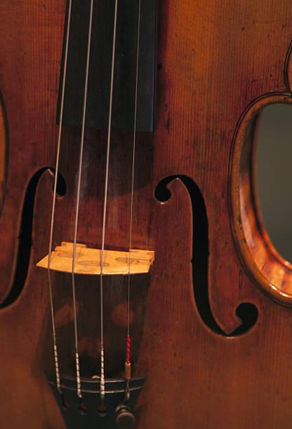 Violin.:スマホ壁紙(壁紙.com)