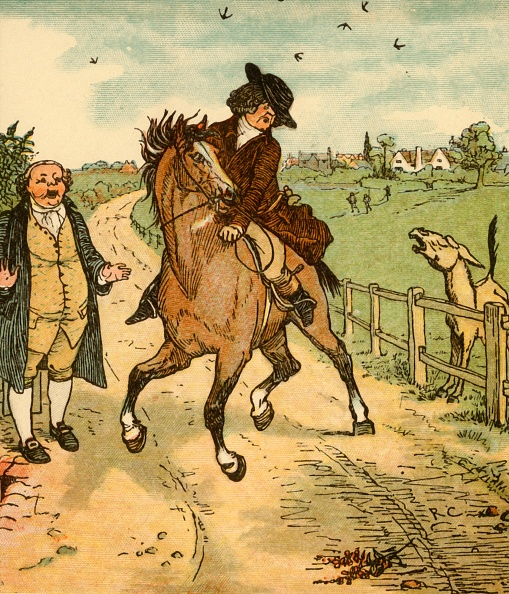 Mammal「John Gilpins Horse Is Alarmed By A Donkey」:写真・画像(19)[壁紙.com]