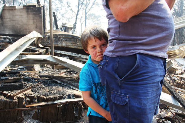 Residents Returned To Destroyed Homes As Bushfire Conditions Worsen In NSW:ニュース(壁紙.com)
