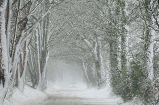 Avenue「Blizzard, Jersey.」:スマホ壁紙(4)