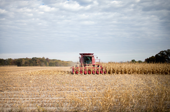 Farm「Iowa Farmers Harvest Crops As Colder Weather Brings Season's End Near」:写真・画像(3)[壁紙.com]