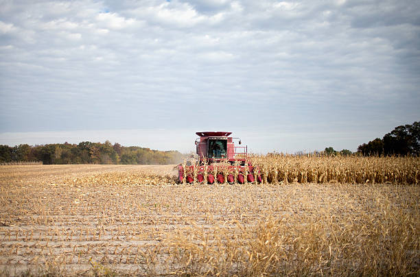 Iowa Farmers Harvest Crops As Colder Weather Brings Season's End Near:ニュース(壁紙.com)