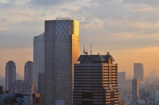 Tokyo - Japan「Tokyo sunset」:スマホ壁紙(3)