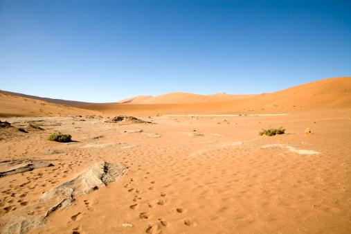 Namibian Desert「Namibian Desert」:スマホ壁紙(10)