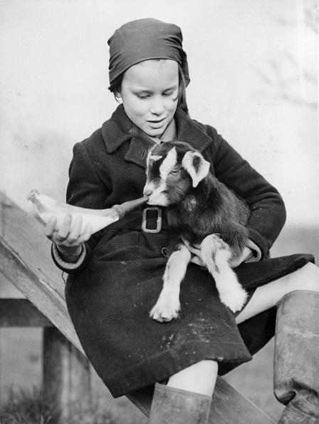 Fred Morley「Schoolgirl Farmer」:写真・画像(12)[壁紙.com]