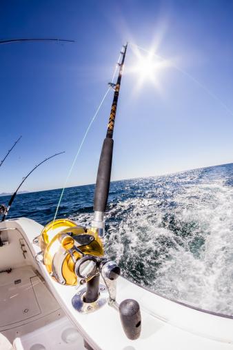 Fishing「Fishing Reel」:スマホ壁紙(1)