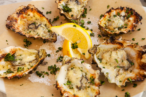 Mollusk「charbroiled oysters on the half shell」:スマホ壁紙(2)