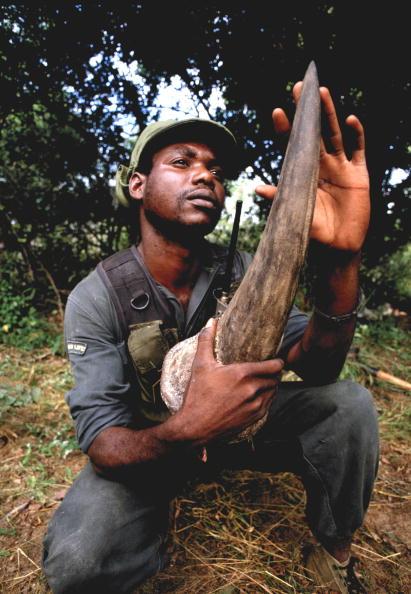 Tom Stoddart Archive「Poachers」:写真・画像(2)[壁紙.com]