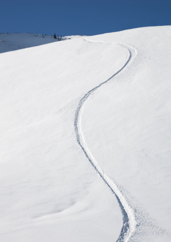Utah「Fresh snowboard tracks in powder」:スマホ壁紙(16)