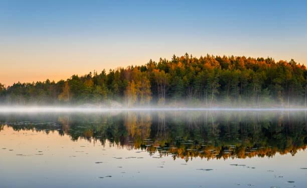 Morning lake with fog in autumn colors:スマホ壁紙(壁紙.com)
