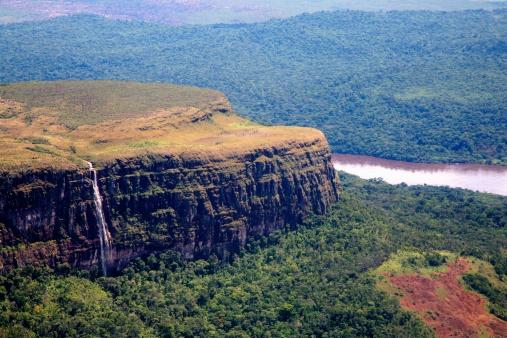 Amazon Rainforest「Amazon Jungle, Rainforest, Venezuela」:スマホ壁紙(18)