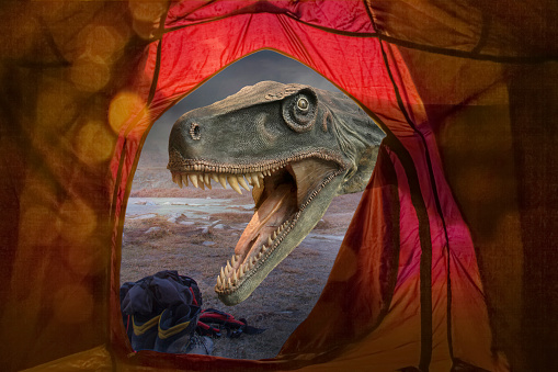 Tent「Dinosaur roaring outside tent at remote campsite」:スマホ壁紙(5)