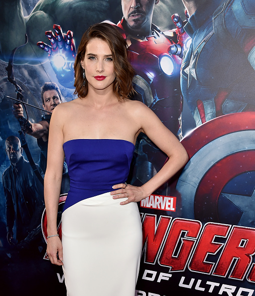 "Avengers Age of Ultron「Premiere Of Marvel's ""Avengers: Age Of Ultron"" - Red Carpet」:写真・画像(0)[壁紙.com]"