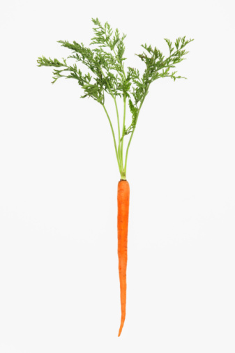 Carrot「Organic carrot with greens on white background」:スマホ壁紙(7)