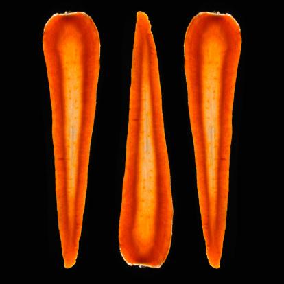 Carrot「Organic Carrots」:スマホ壁紙(14)