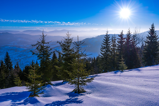 Winter Solstice「Mountain sunshine」:スマホ壁紙(8)