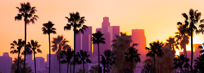City Of Los Angeles「Downtown Los Angeles」:スマホ壁紙(10)