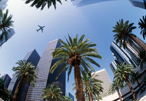 City Of Los Angeles「Downtown Los Angeles」:スマホ壁紙(17)