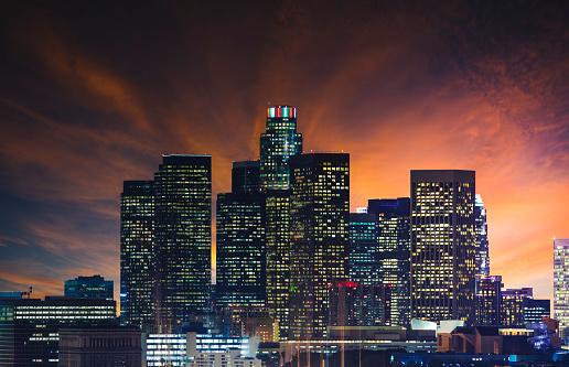 ヤシ「ロサンゼルスのダウンタウン 」:スマホ壁紙(17)