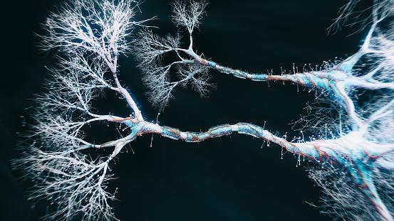 Neuroscience「Neuron cell close-up view」:スマホ壁紙(11)