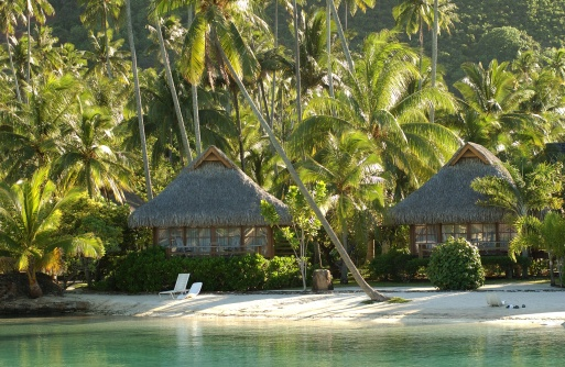 French Overseas Territory「Thatched houses on a beach, Moorea, Tahiti, French Polynesia, South Pacific」:スマホ壁紙(2)
