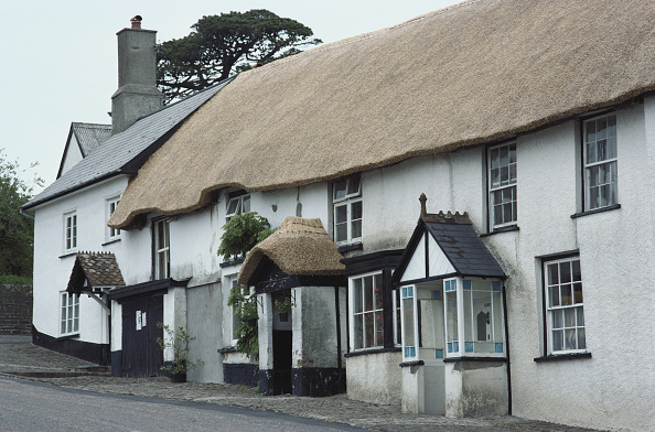 Thatched Roof「Thatched Housing」:写真・画像(4)[壁紙.com]