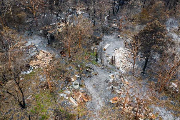 bush fire destruction with home:スマホ壁紙(壁紙.com)