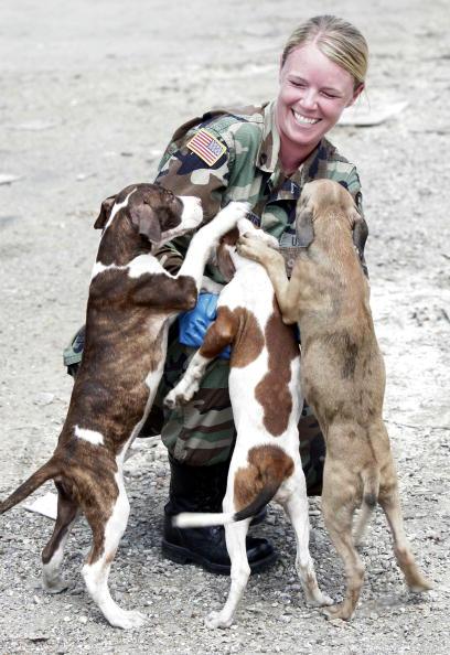 Toothy Smile「Hurricane Katrina Aftermath - Day 19」:写真・画像(8)[壁紙.com]
