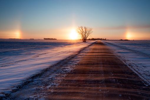 Manitoba「Manitoba Sundogs」:スマホ壁紙(17)