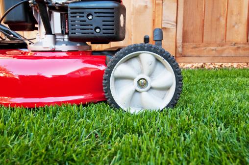 Mowing「Lawnmower on lush green lawn」:スマホ壁紙(10)